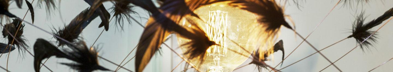 Lampe spécifique