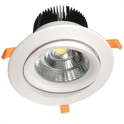 Cavell Spot LED encastré inclinable IP42 - 50W - 2700K - 200 mA - Blanc + Driver 168877 inclus